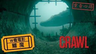 W看電影_鱷魔(Crawl, 爬行, 噬逃險鱷)_重雷心得