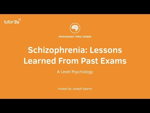 Schizophrenia: Lessons Learned From Past Exams