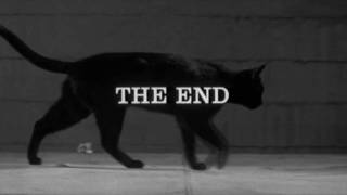 Black Cat end title - Walk on the Wild Side