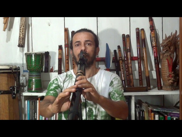 Flauta Nativa Estilo NAF Negra C