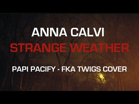 Anna Calvi - Papi Pacify bedava zil sesi indir