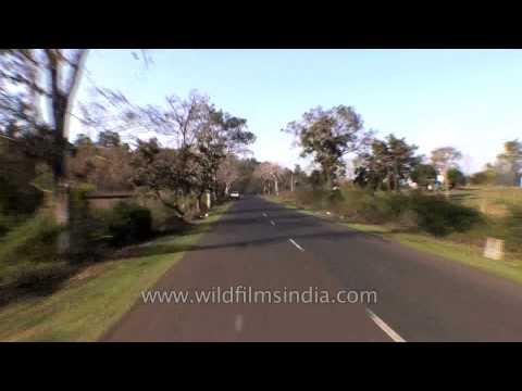 Driving from Jabalpur to Kanha