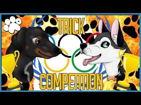 DOGGY TRICK COMPETITION! (who will win???)