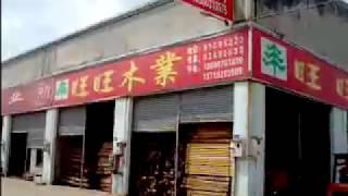 Andrei Rochian in China.timber market Guangzhou Canton china