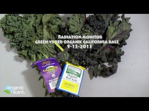 Radiation monitor Organic California kale green vs red 9-15-2015 | Organic Slant