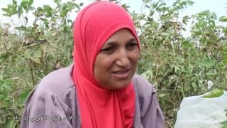 تدشين حملة تمكين المرأة الريفية (فيديو) | المصري اليوم
