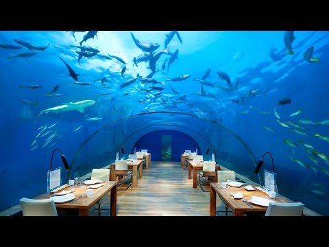 Coolest Underwater Hotels From around The World HD 2015