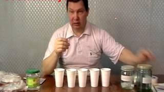 Подготовка семян перцев и баклажан к посеву