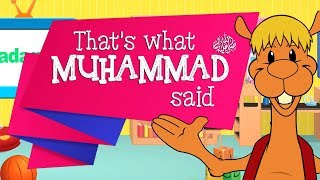 Sadaqah & Helping Orphans - Muslim Cartoon with Kazwa