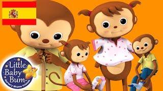 Canciones Infantiles | Estoy Aprendiendo a Vestirme | Dibujos Animados | Little Baby Bum en Español