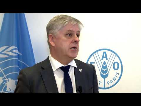 Remarks by Iceland's Minister for Finance and Economic Affairs at FAO