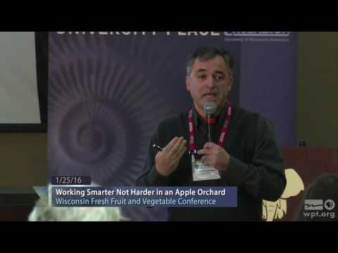 WPT University Place: Working Smarter Not Harder in an Apple Orchard