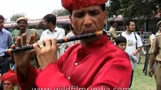 Rajasthani folk dance & music performed at Jaipur Elephant Festival