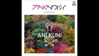 Pink Noisy - Ani Kuni