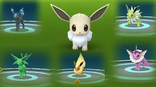 Omg Catching Shiny Eevee on weather boosted Community Day!
