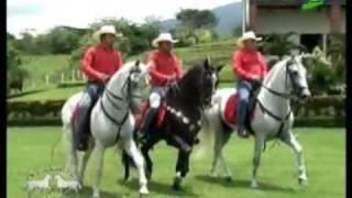 Te Presumo - Banda Recodo (Finca Linda Vista, Taxisco) Lic. Carlos Quintanilla