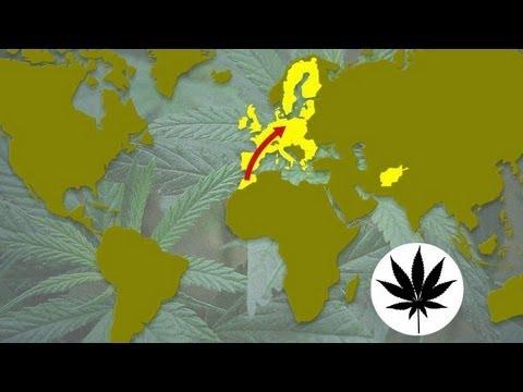 Global drugs trafficking