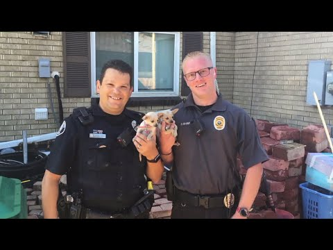 Family thanking first responders for saving dogs from Lakewood home