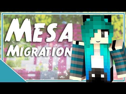Mesa Migration | Episode 35 | Art Studio Outdoor Cafe