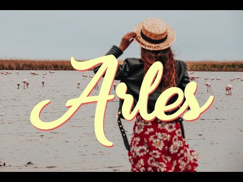 South of France 05 - ARLES and AIX en PROVENCE - Pink Flamingos ???