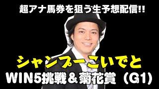 YouTube動画:スワンS&アルテミスS万馬券を狙って徹底予想!!