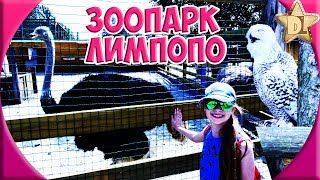 Короче говоря Зоопарк Лимпопо. Экзотические животные и ручные пони.  Экскурсия по зоопарку Меденичи
