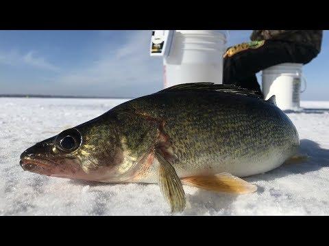 Ice Fishing Houghton Lake   Northern Michigan