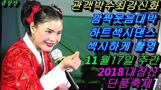💗버드리 깜짝놀랄 배꼽웃음대박명품💗 11월17일 주간 2018 내장산 단풍축제 초청공연