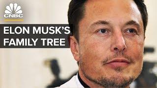 Elon Musk's Family Tree Explained