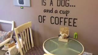 בית הקפה Tails