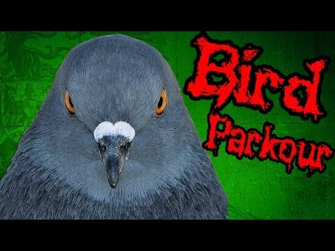 видео: Паркур с Губкой Гопом - Flappy Bird Parkour