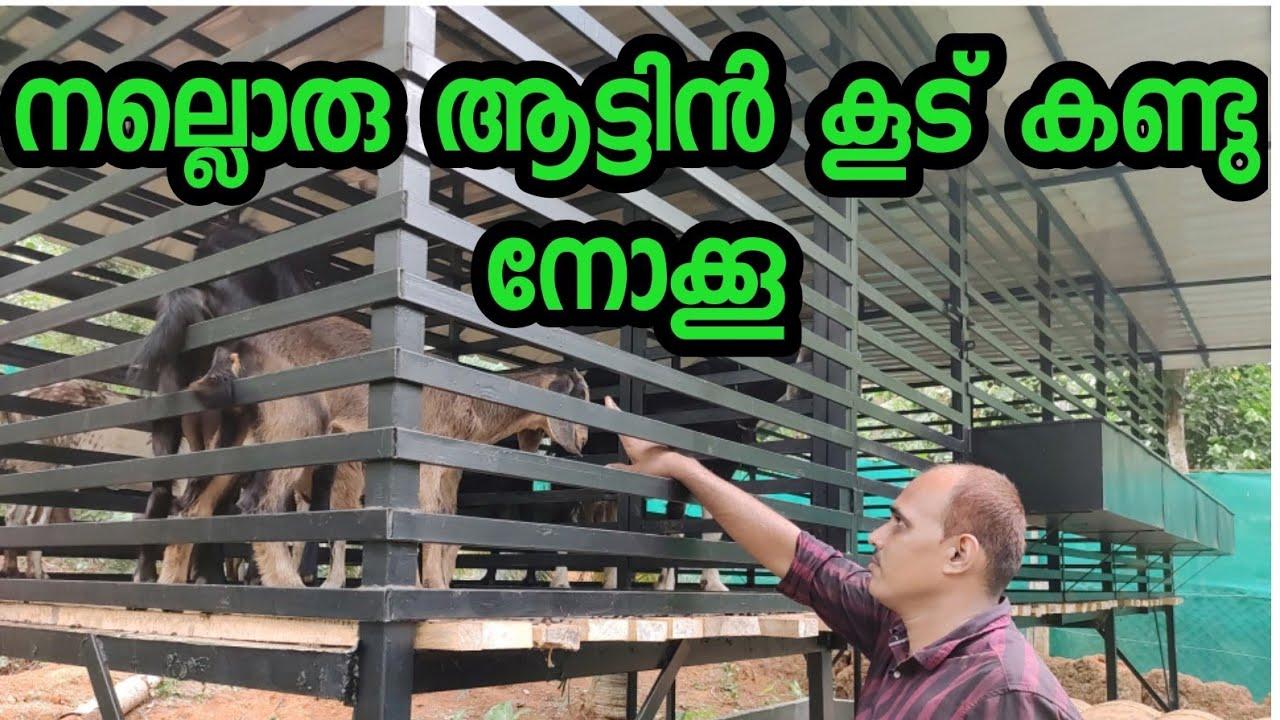 ആട് ഫാം തുടങ്ങുന്നവർക്ക് നല്ലൊരു അട്ടിൻകൂട് പരിചയപ്പെടാം,goat farm & goat cage