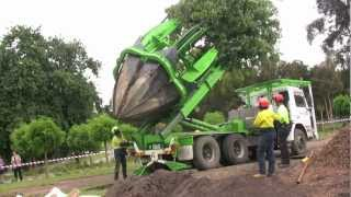 Tree Transplanting With Arborco Melbourne.m4v