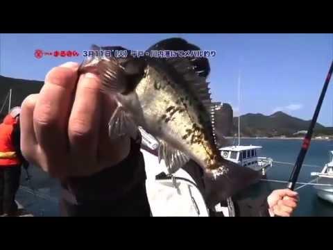 平戸・川内港にてメバル釣り2014年3月11日つり具のまるきん釣り情報