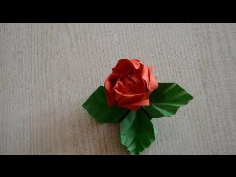 Роза Кавасаки І Как Сделать