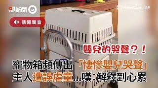 鸚鵡躲寵物箱狂學嬰兒哭 害主人被誤會虐童:解釋到心累|寵物