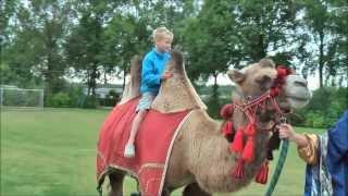 Sander & Thijs op de kameel