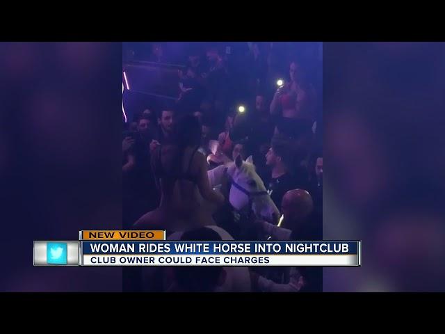Miami Nightclub Shuts Down After Woman in a Bikini Rides a Horse onto the Dance Floor