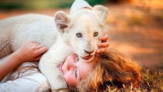 Фильм «Девочка Миа и белый лев» — Русский трейлер [2019]