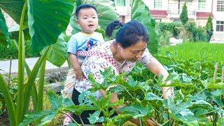 一歲多寶寶好粘人,媳婦要到菜地摘菜,還得背著她