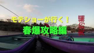 亀山ダムに春爆を求めての釣行です!さぁ、でかいの釣ったるぞ!と週間...