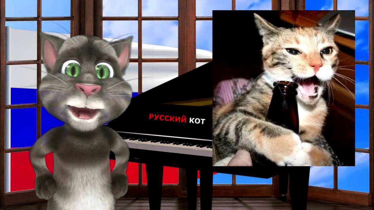 Русский Кот - Человек и кошка - YouTube