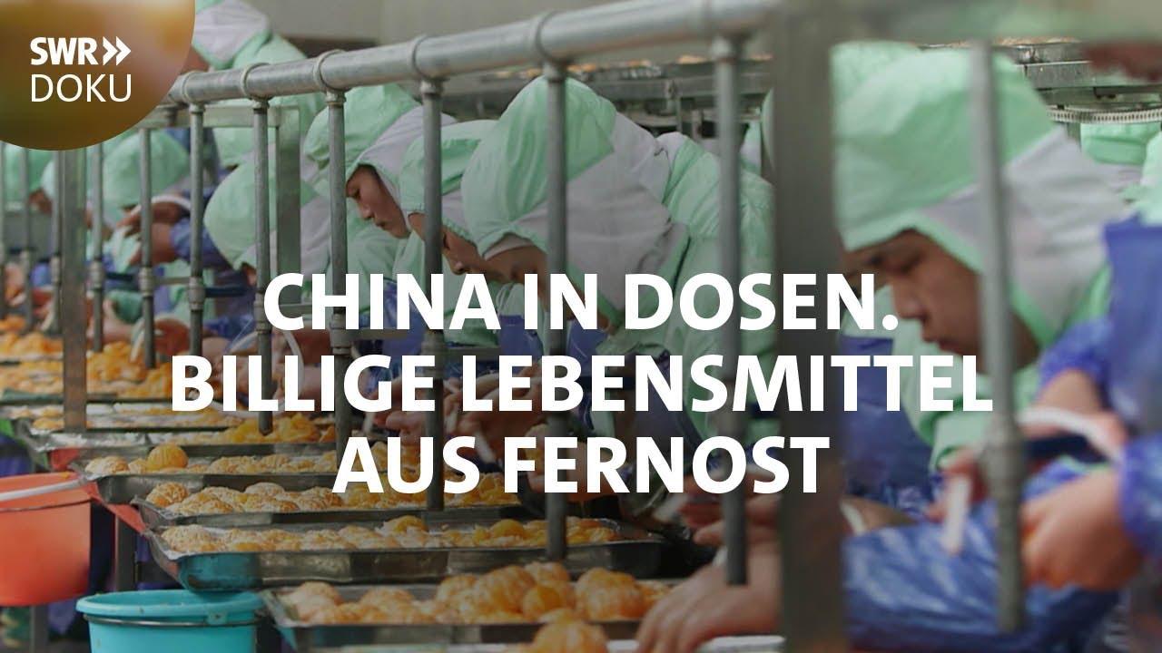 china in dosen