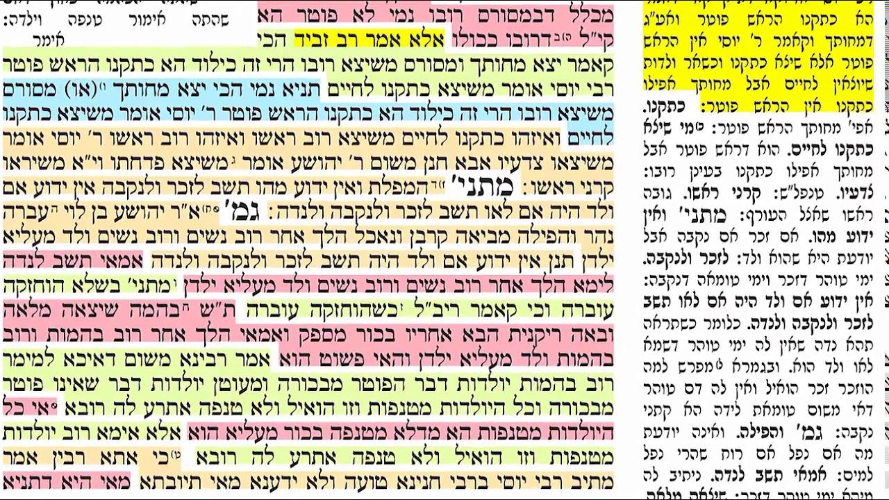 דף יומי מסכת נידה דף כט Daf yomi Niddah daf 29