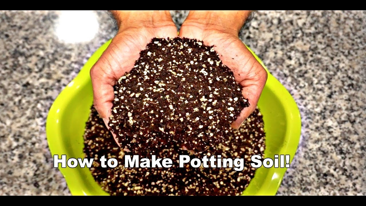 How To Make Potting Soil You