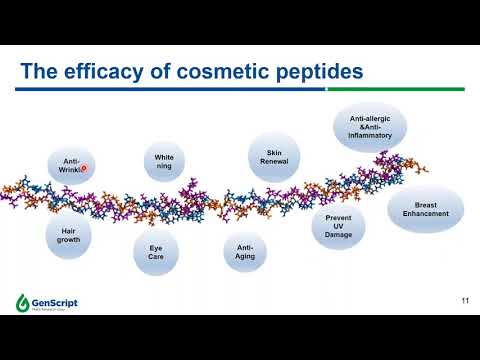 Peptide Application for Skin Care and Cosmetics