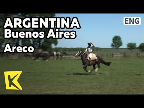 【K】Argentina Travel-Buenos Aires[아르헨티나 여행-부에노스아이레스]아레코, 가우초 전통 목장/Areco/Gaucho/Shepherd boy/Parilla