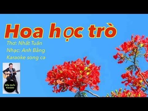 Hoa Học Trò _ Karaoke Song Ca - Quốc Hiệp