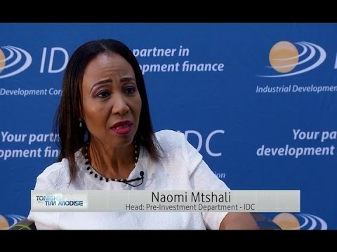 IDC's Head of Pre-investment, Naomi Mtshali — The Industrial Development Corporation of SA