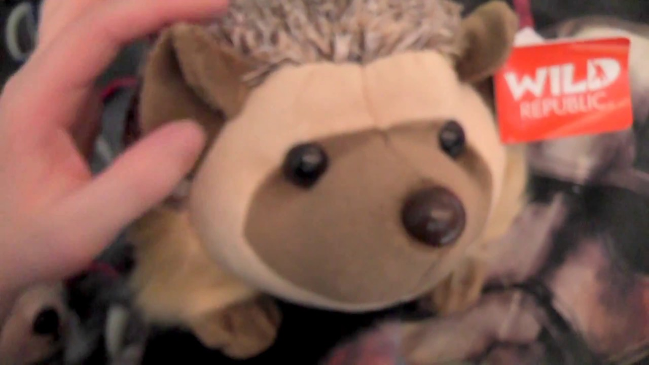 ffe2eb7db3a6 Package Wild Republic Cuddlekins African hedgehog plush - YouTube